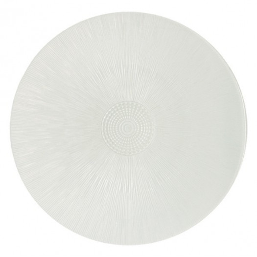 ASTER plates (various colours)